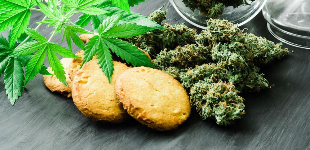 JaneDummer_Cannabis_image